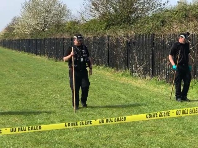 Police search field behind Humber Walk the morning after Wes Brown's death. Image: JPI Media.