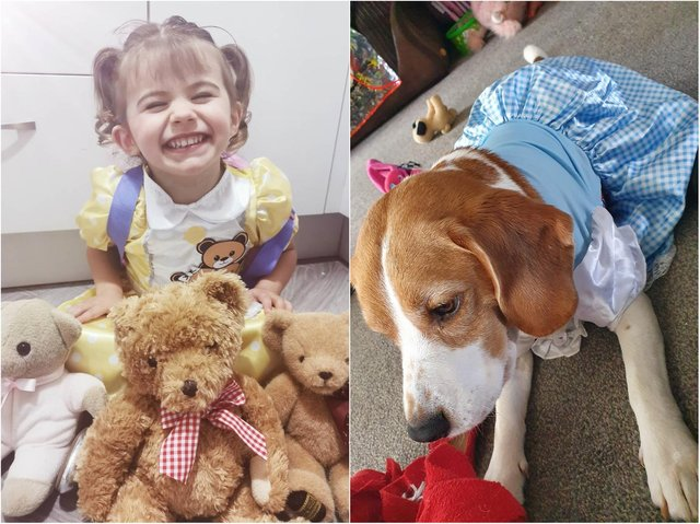 Harlee and Buddy-Love are among the north Northamptonshire literature fans dressing up to celebrate World Book Day.