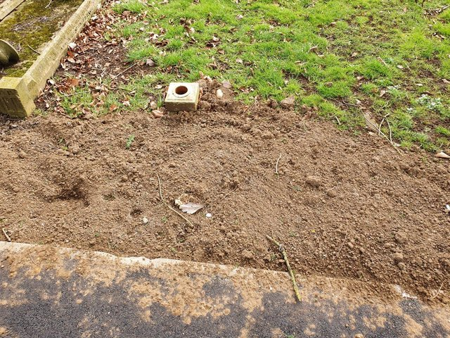 The soil on the grave