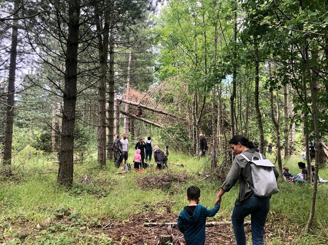 Children and parents at an activity day in the wood. Picture by Siobhan Currie.
