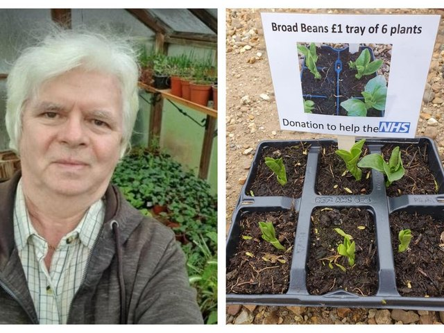 David Woods has been selling plants to raise money for the NHS.