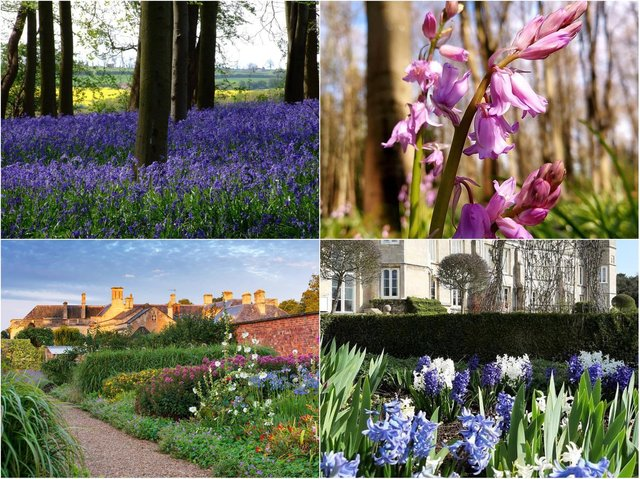 There are many beautiful gardens to explore in Northamptonshire