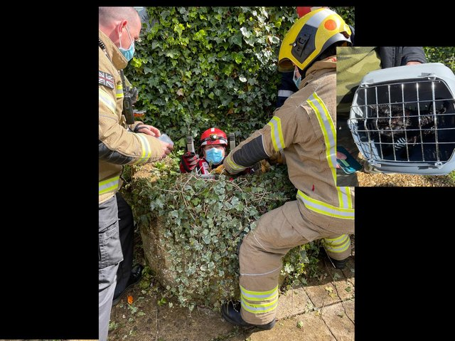 A firefighter in the well and Flea the car (inset)