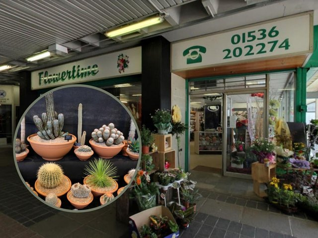 The thief stole her cactus from Flowertime in Corby. Image: Google / Inset: Getty Images.